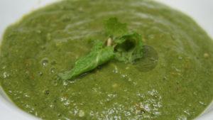 Green Chutney (Coriander Mint Sauce)